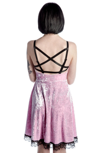 Adora Velvet Crush Dress [PINK]