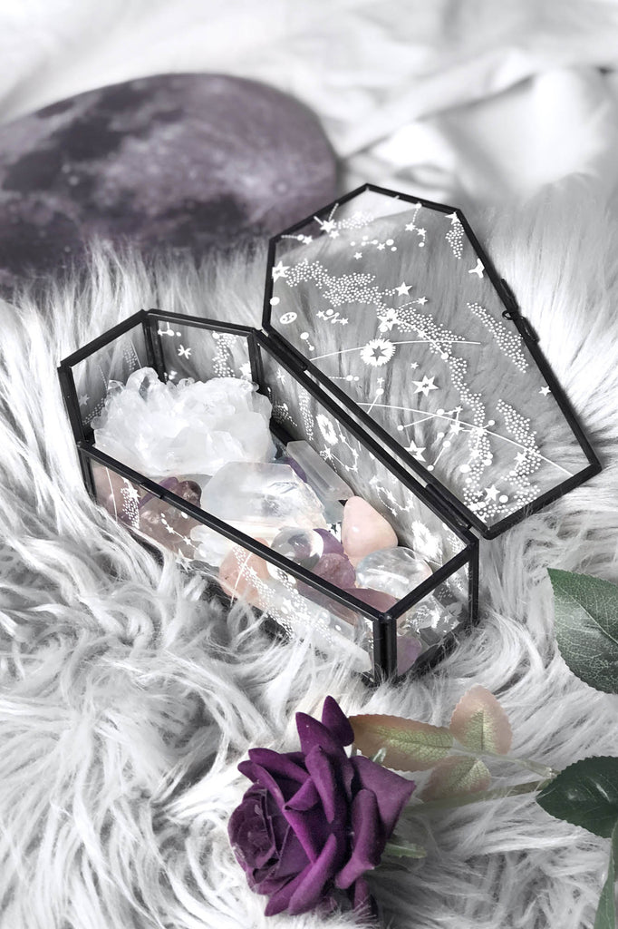 Ethereal Coffin Terrarium [B]