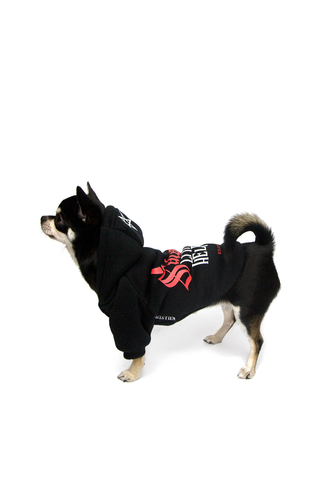 Little Helper Dog Hoodie