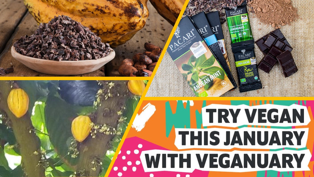 VEGANUARY- how to make the new year right