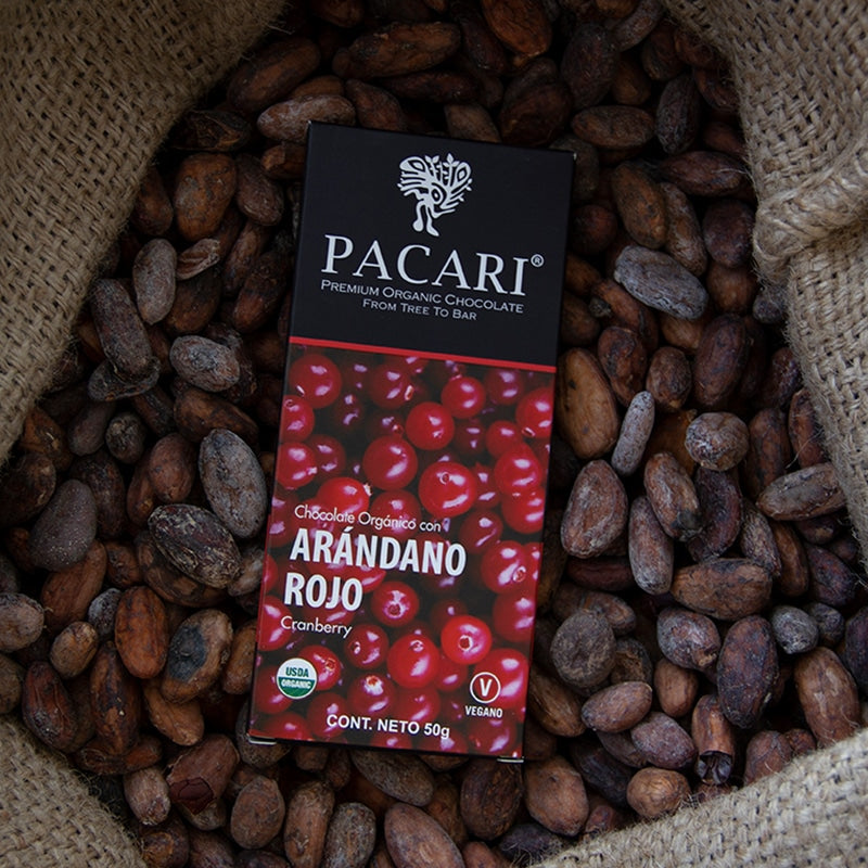 Organic Chocolate Bar with Cranberry