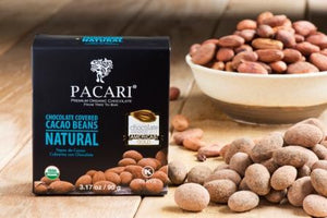 Organic Chocolate Covered Cacao Beans Natural