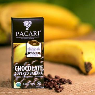 Organic Chocolate Covered Banana