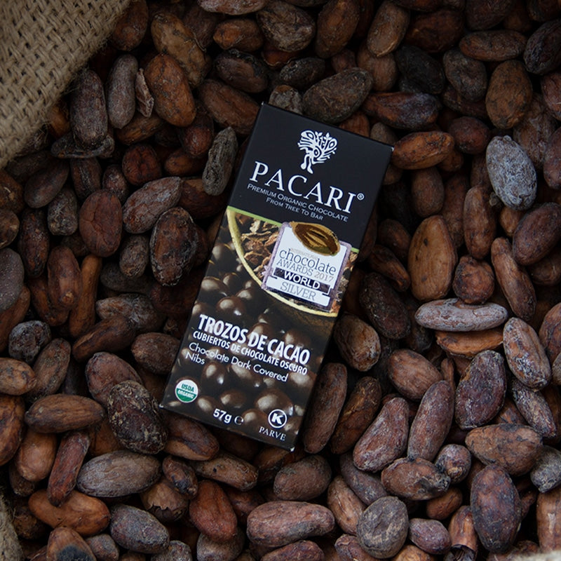 Organic Chocolate Covered Cacao Nibs