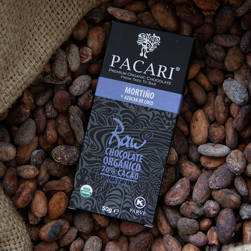 Raw Organic Chocolate Bar 70% Andean Blueberry with Coconut Sugar