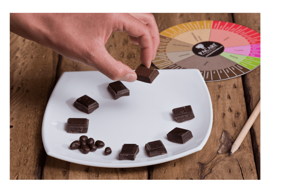 Pacari Chocolate Private Tasting Experience in Edinburgh