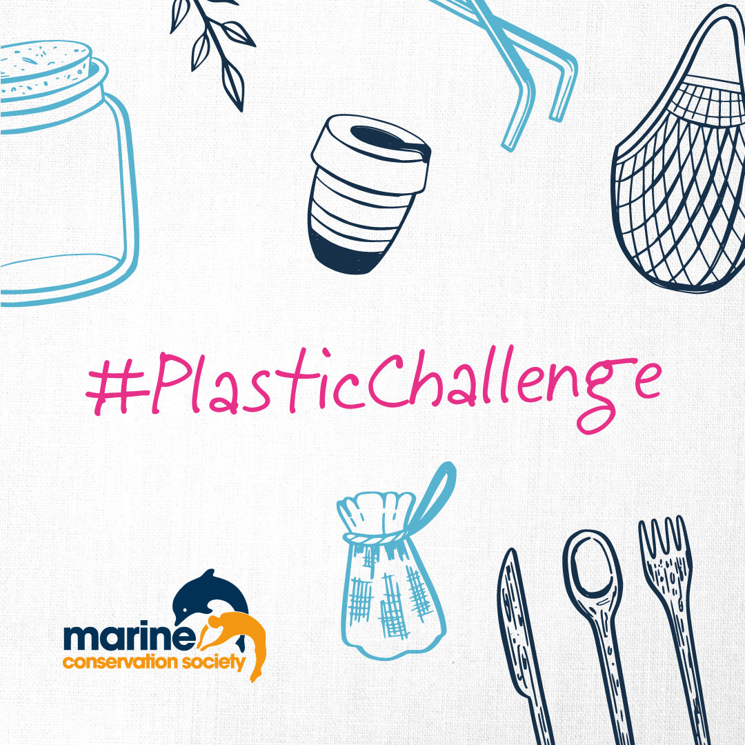 Tips for Going Plastic Free July