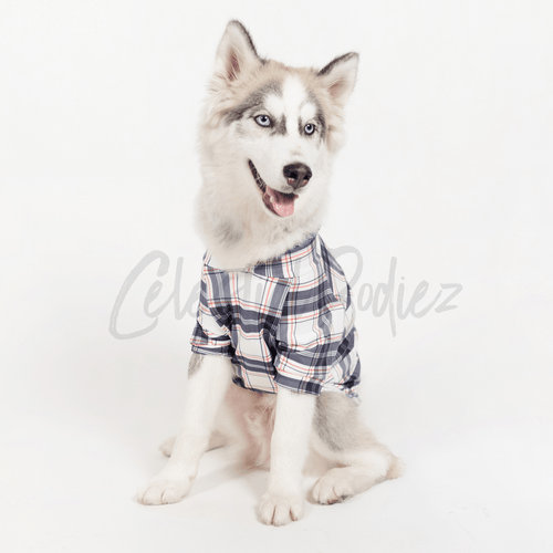 Princess Plaid Pet Pullover