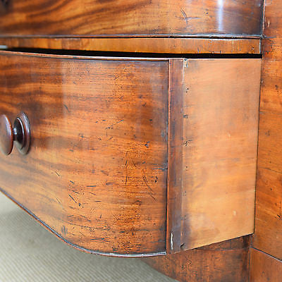 Large Victorian Scottish Chest of Drawers