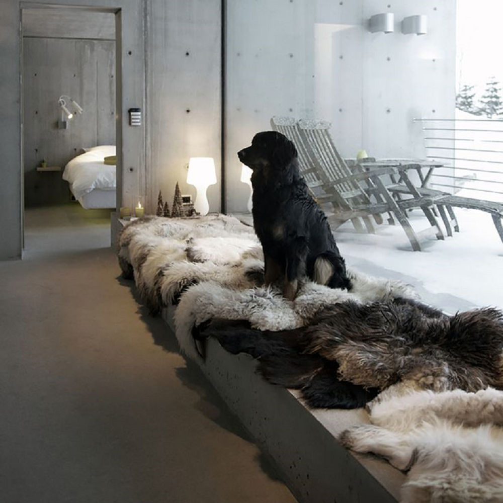 Interior Design Trend > Winter Wonderland