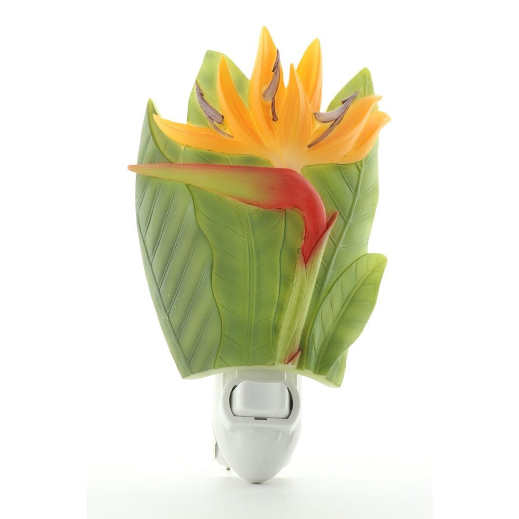 Bird of Paradise - Tropical Flower Nightlight Ibis and Orchid Design