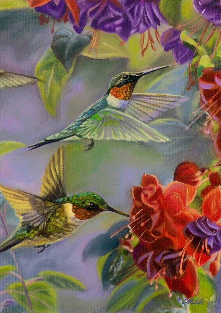 Hummingbirds Spring House Flag