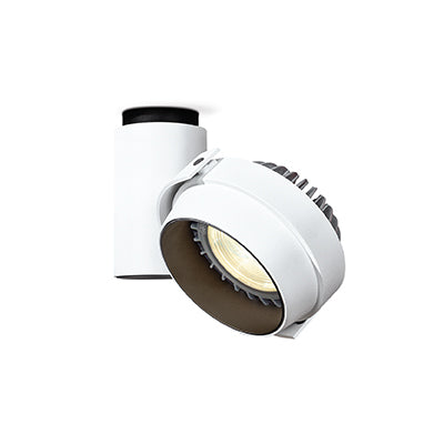 COIN-CEIL-WW Downlight - Lamptitude