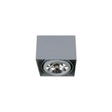 QN-BOX-1 Downlight - Lamptitude