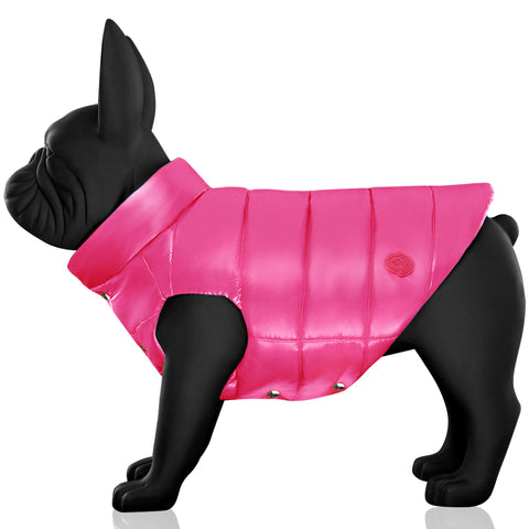 Moncler & Poldo Dog Couture Vest
