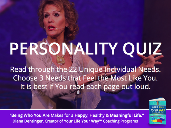 Personality Quiz & The 22 Unique Individual Needs