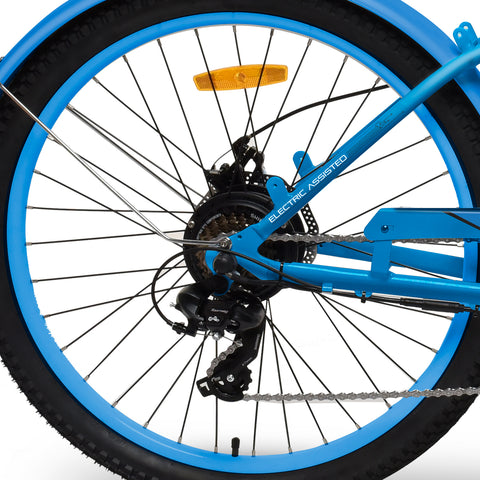 EMOJO Hurricane Beach Cruiser Electric Bike 36V 500W - Disc Brake details
