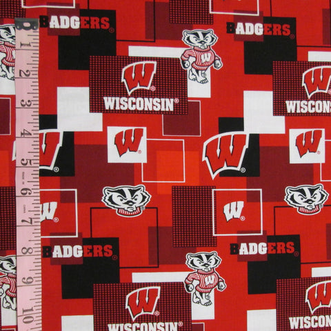 College Prints, UW-Madison Badgers (6417)