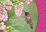 Nature's Friends-Birthday