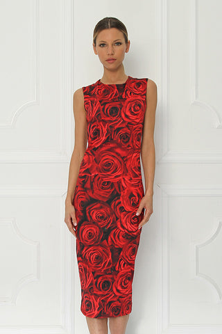 Sirine Printed Sleeveless Fitted Dress