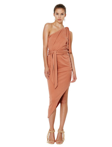 Delphine Asymmetrical Dress - Bec & Bridge - Dress - TOPGEARNY