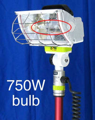 ON SALE: Backup Bulbs (750W Halogens)