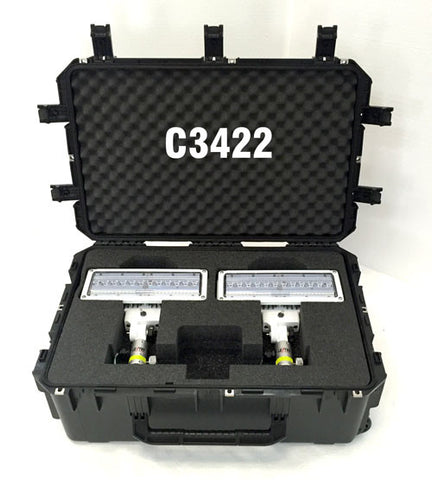 Case C3422 is included with model 2SPECXX-C. Shown open, with 2 LEDs inside.