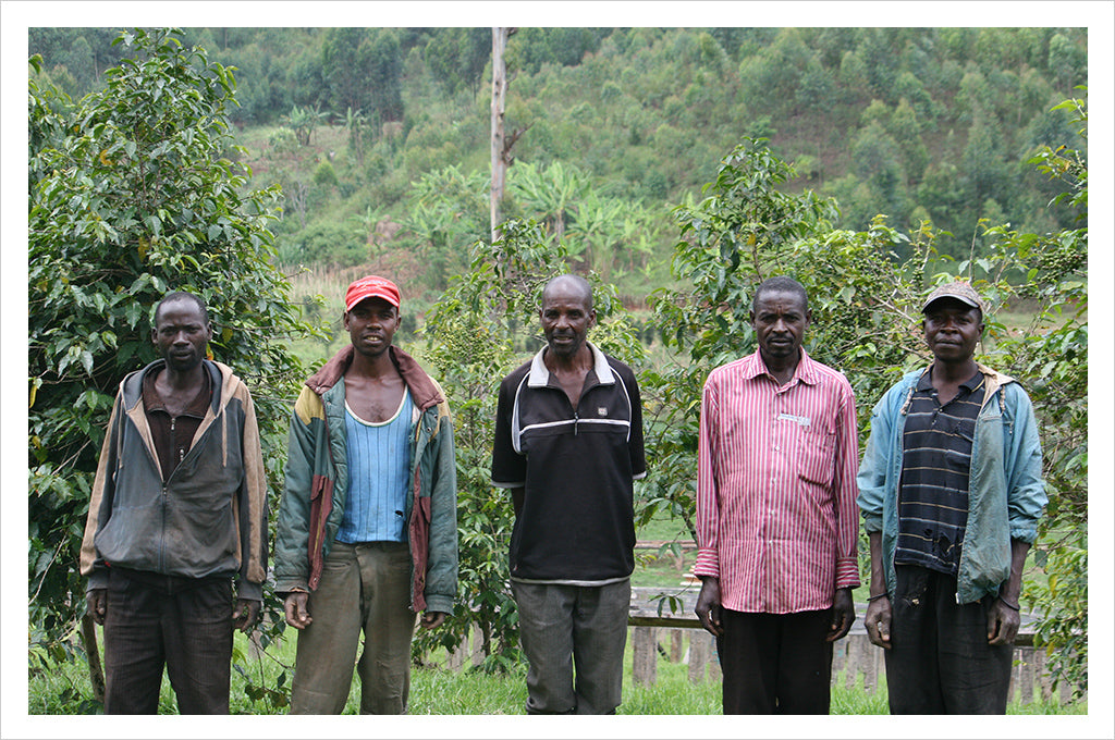 Burundi Single Origin coffee - Masha Washing Station