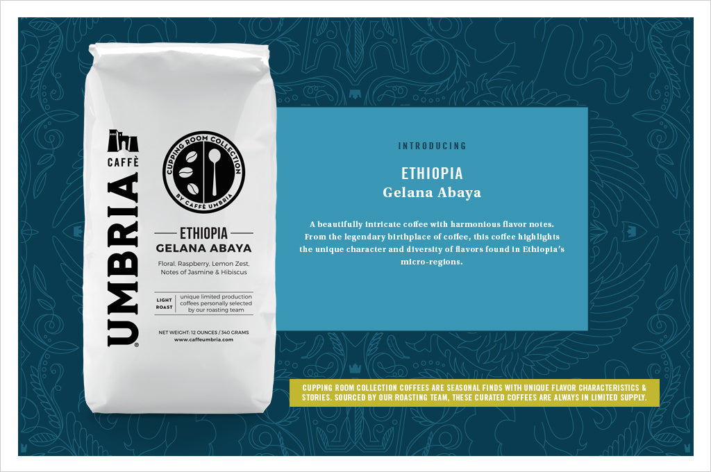Ethiopia Gelana Abaya, the January 2019 Release in the Cupping Room Collection