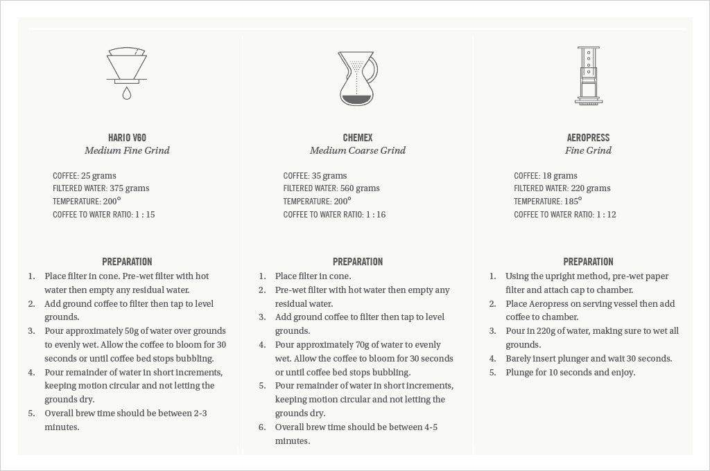 Honduras El Jaguar coffee brewing guide with recipes for hario v60, chemex, and aeropress