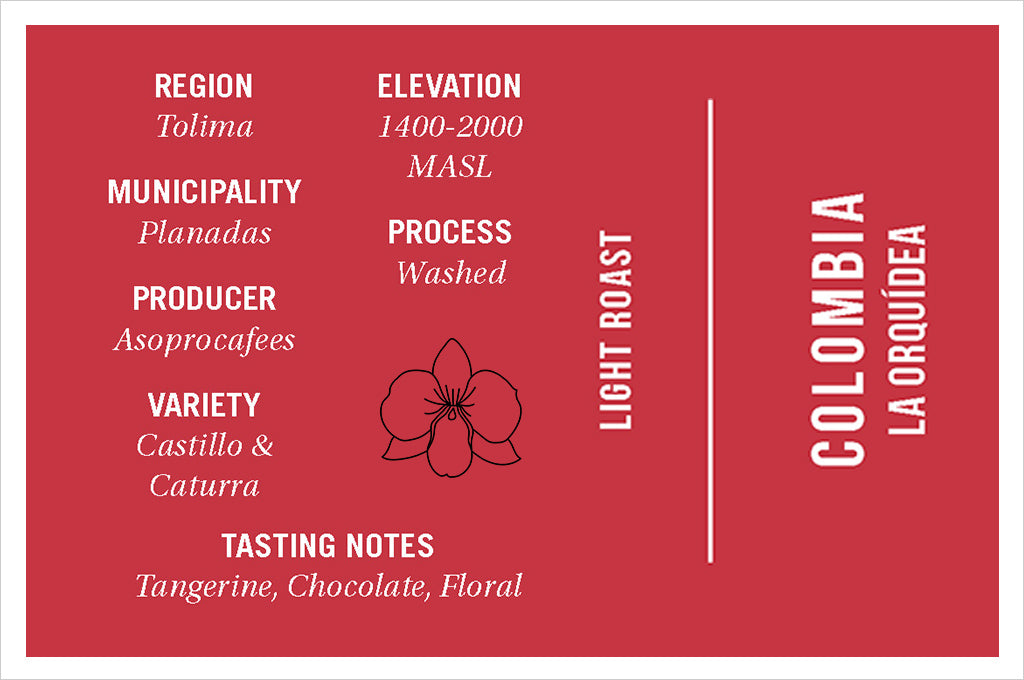 Colombia La Orquidea tasting notes