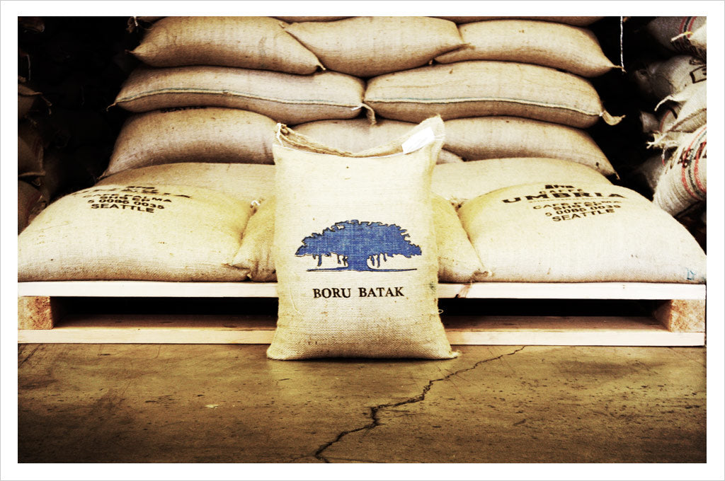 Sumatra Boru Batak Single Origin