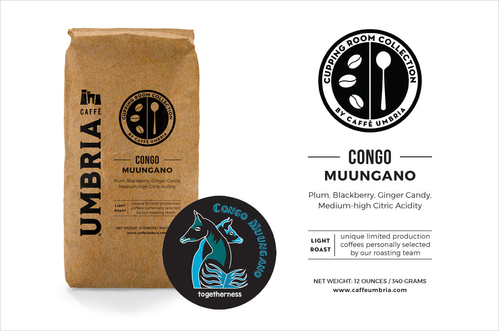 2018 Congo Muungano Cupping Room Collection