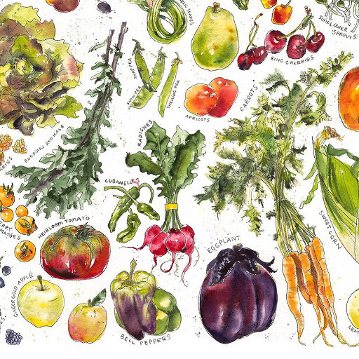 Fruit + Veggies 12x16 Print
