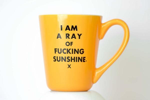 """I Am a Ray Of Fucking Sunshine"" Mug"