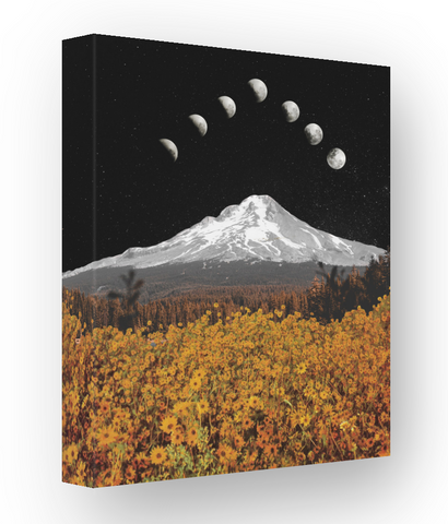 I Only Told the Moon, 16x20 image wrapped canvas