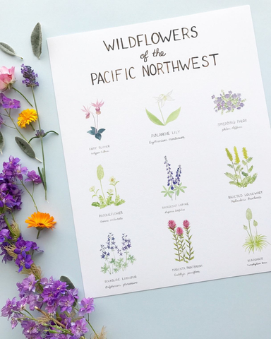 Pacific Northwest Wildflowers 11x14 Print