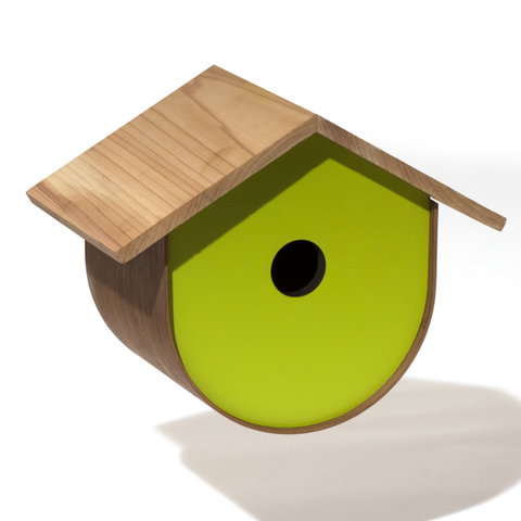 BirdHome Urban Walnut - Green