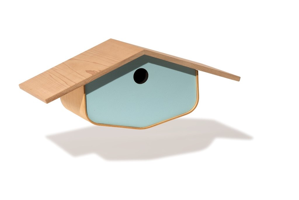 BirdHome Mid Century Maple - Blue