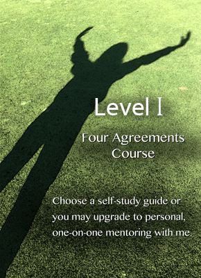 Four Agreements Course Level I