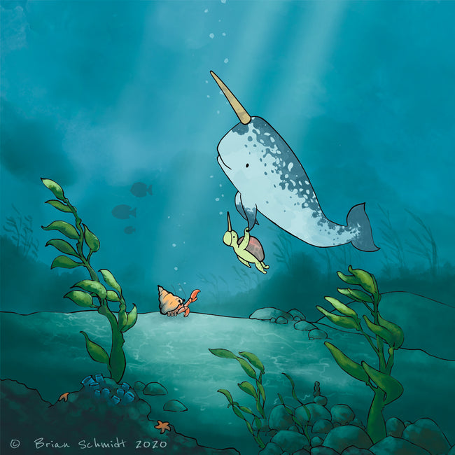 Narwhal & Sea Turtle