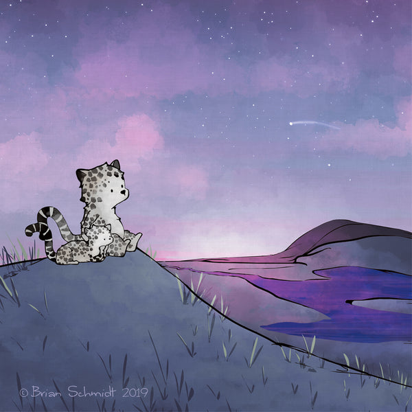 Snow Leopard Art Print - Stargazing