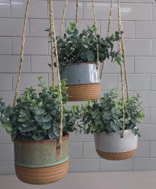Practical Bee - Hanging Planters