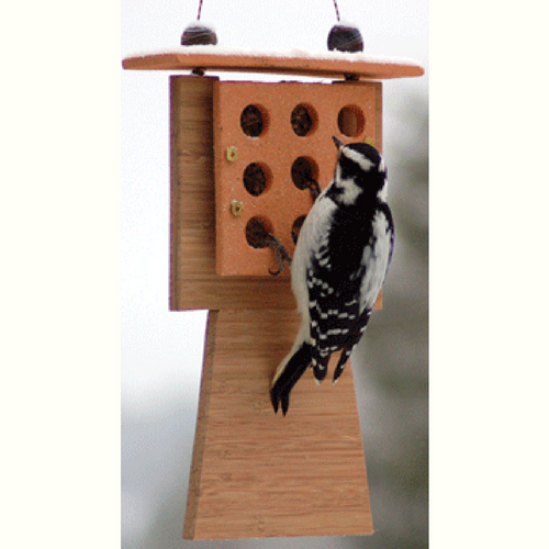 McIntosh Suet Feeder