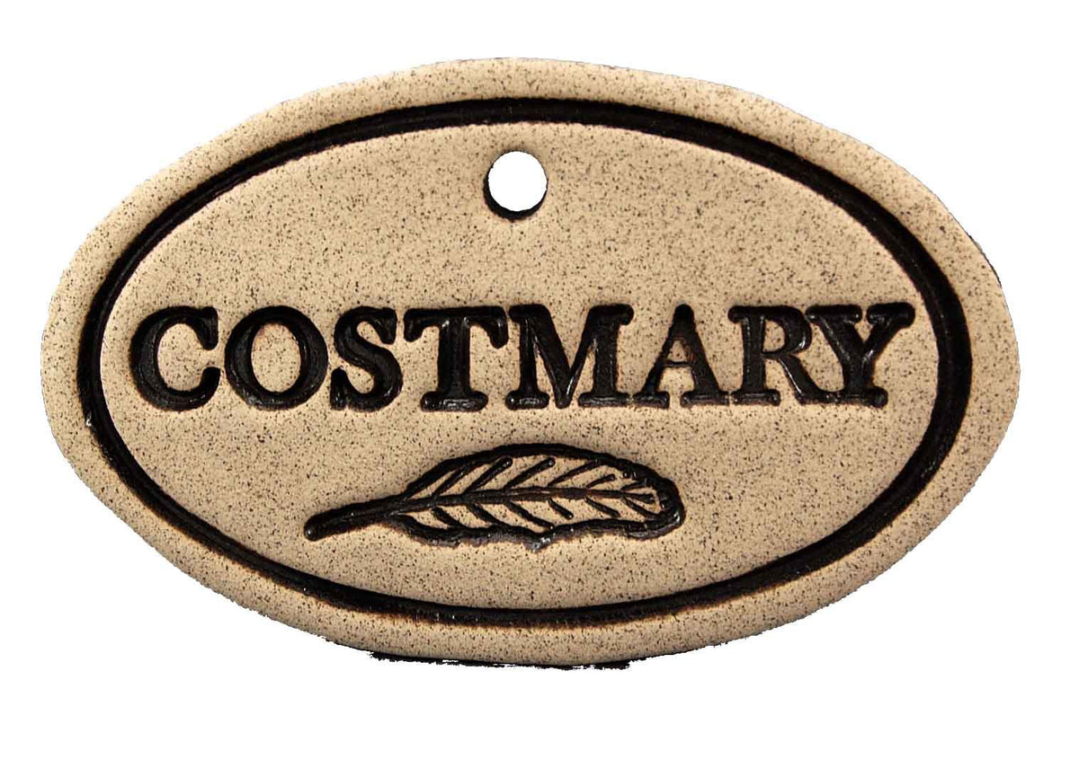 Costmary - Amaranth Stoneware Canada