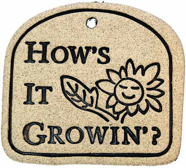 How's It Growin'? - Amaranth Stoneware Canada