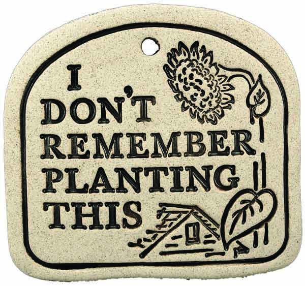 I Don't Remember Planting This - Amaranth Stoneware Canada