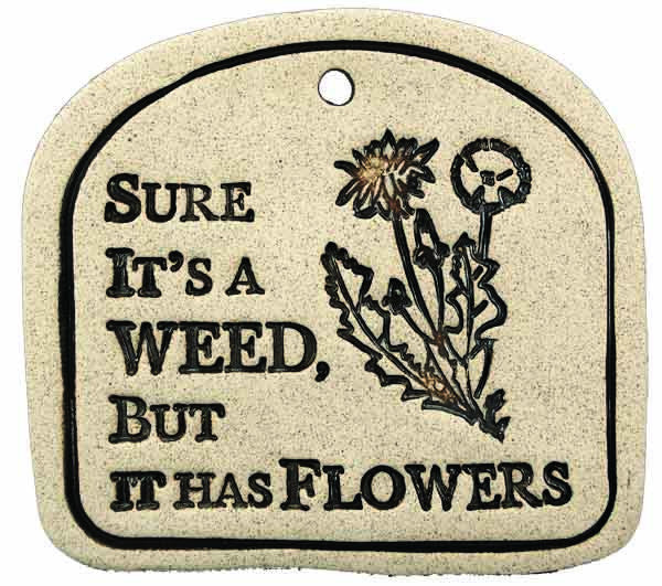 Sure It's A Weed, But It Has Flowers - Amaranth Stoneware Canada