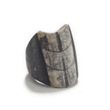 Black/White Orthocera Fossil & Agate Ring
