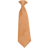 New KID'S BOY'S 100% Polyester Pre-tied clip on necktie only formal wedding